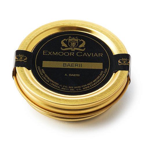 Exmoor Caviar - Baerii, 20g