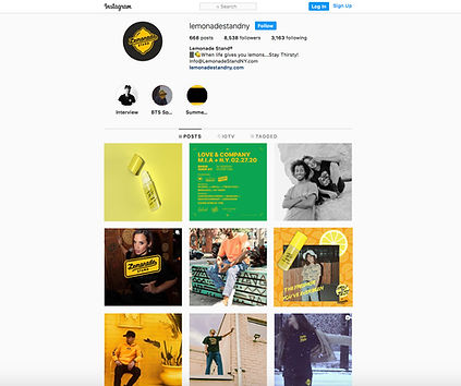 InstagramPageLemon.jpg