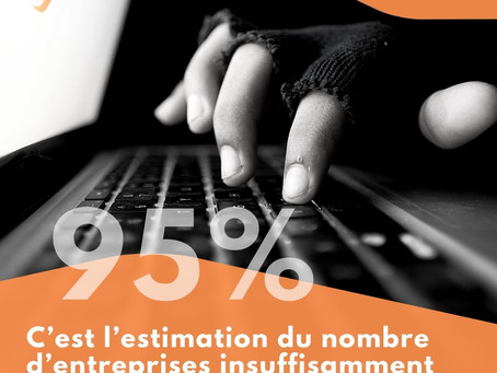 95% C'est l'estimation du nombre d'entreprises insuffisamment protégées au niveau du web.