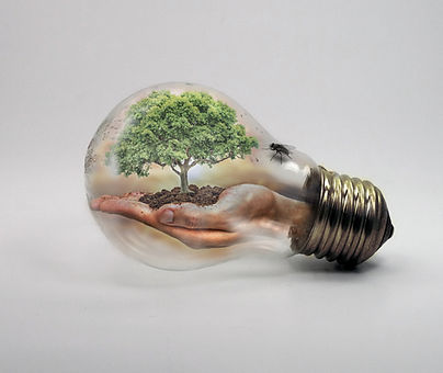 bulb-2368396.jpg