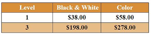 Caricature Artwork Prices