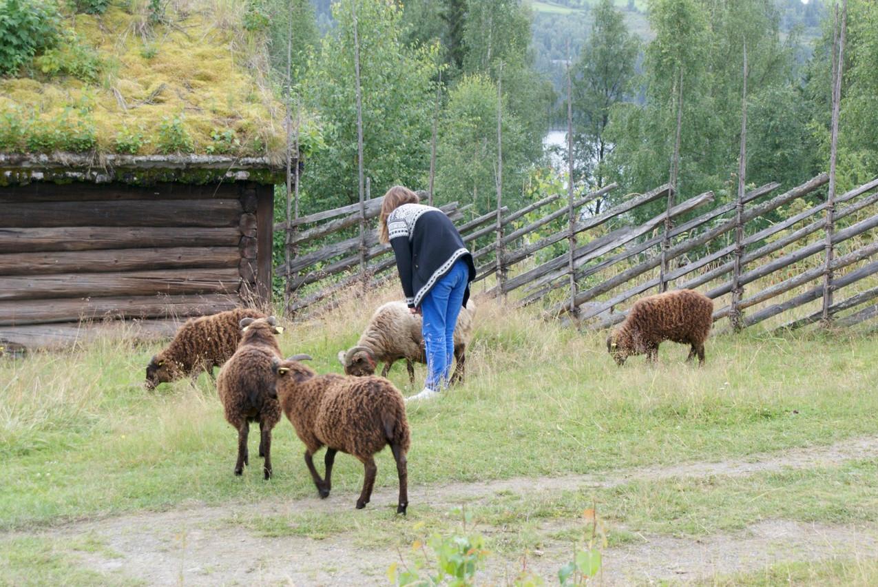 Noorwegen 2009-148