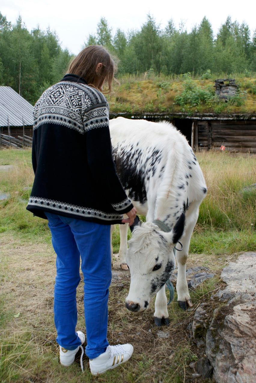 Noorwegen 2009-147
