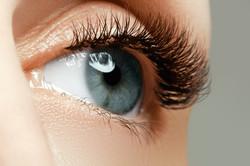 Female Eye With Long Eyelashes Close Up. Closeup Shot Of Female