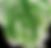 leaf 15.png