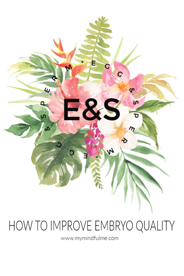 How to improve embryo quality