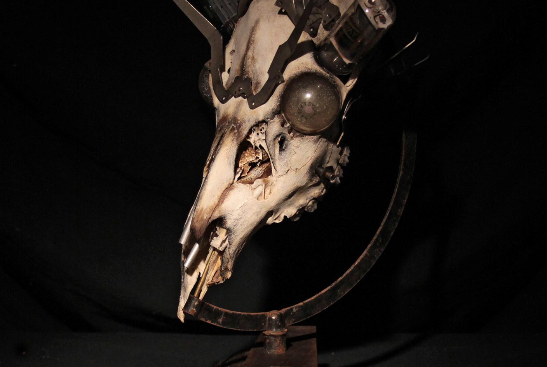 Michanical Skull #4