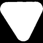 icon-white-2.png