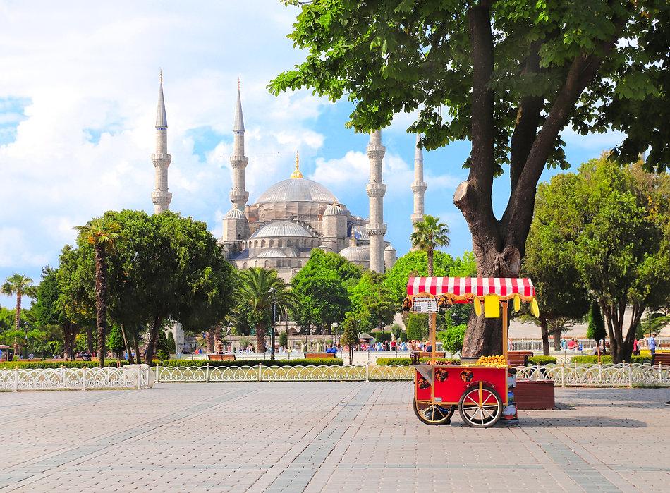 Стамбул. Голубая мечеть..jpg