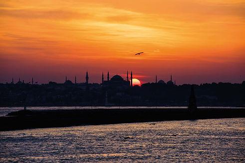 Сиамбул Судьба двух империй.jpg