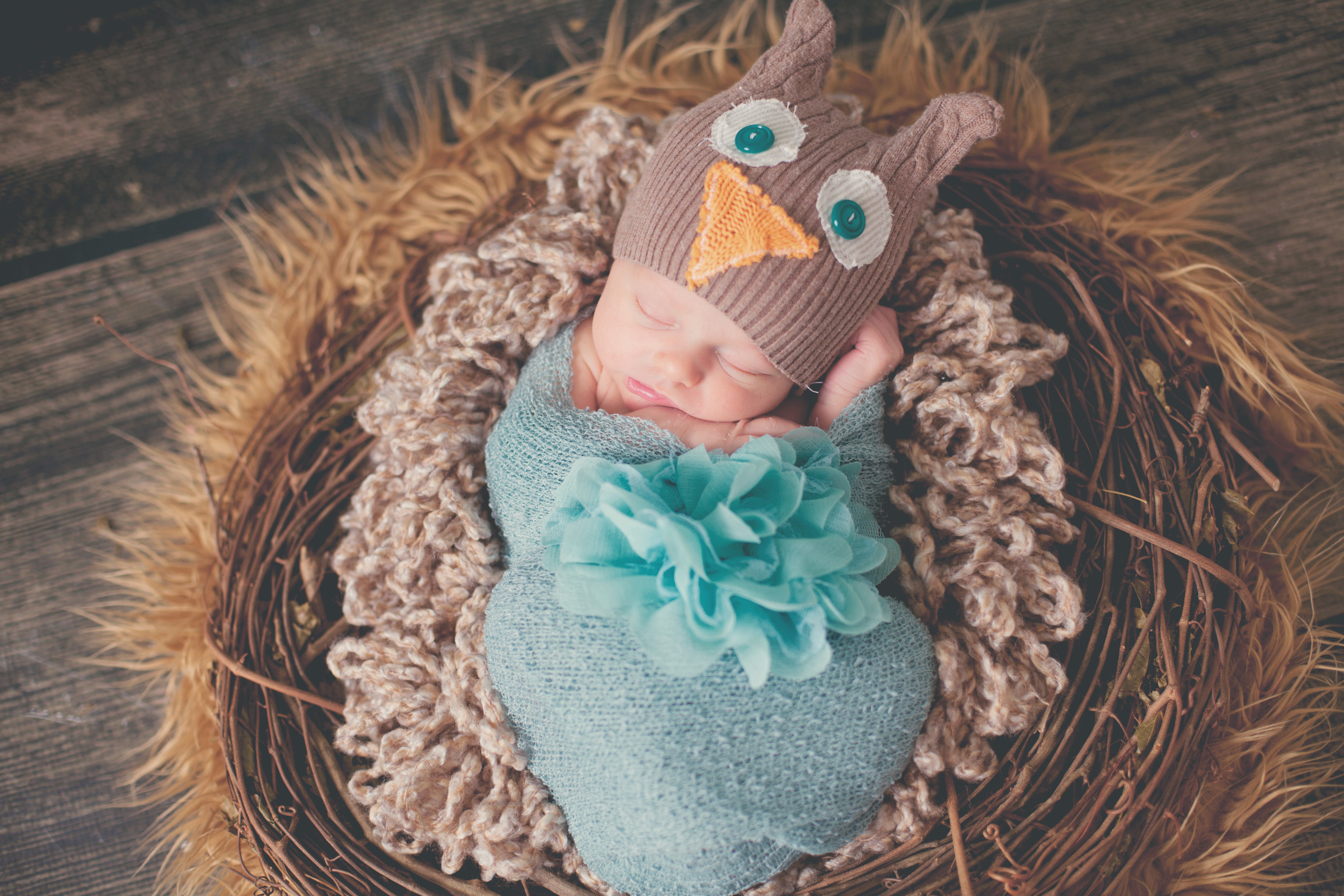 Newborn Session (session ONLY)