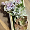 Thumbnail: סוקולנטים;ארגז עץ אלון מעוצב