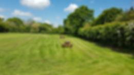 field 5.jpg
