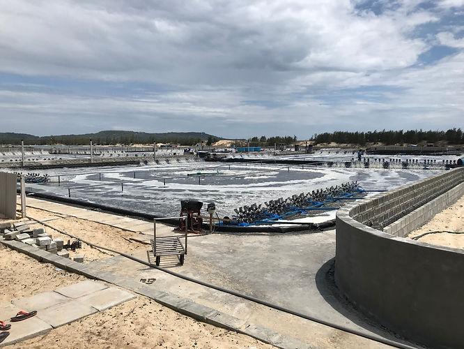 Phu Yen, Vietnam 2019 Intensive shrimp f