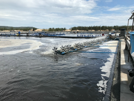Seven myths about microbial products used in aquaculture.