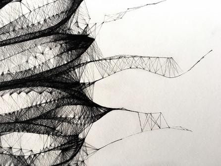 Morphogenesis N0.07   Detail