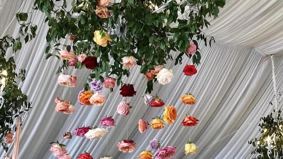 hanging blooms price per ft.