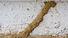 TermiteSubUnder575x380-1.png