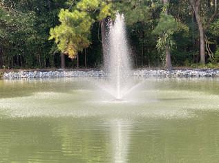 Venue at Holland Farms Weddings & Event Venue, South Carolina (44 of 62).jpg