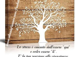 La storia dell'albero..