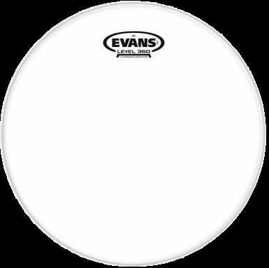 """Evans G1 Clear TT08G1 8"""" Drum Head"""