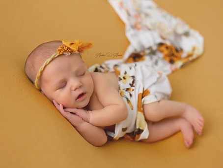 Meet Baby Payzlie | Moscow Idaho Newborn Photographer