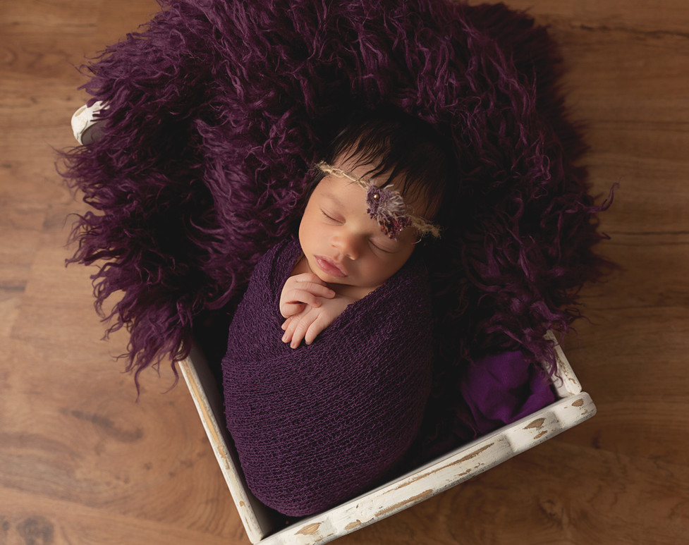 Pullman Washington newborn pictures