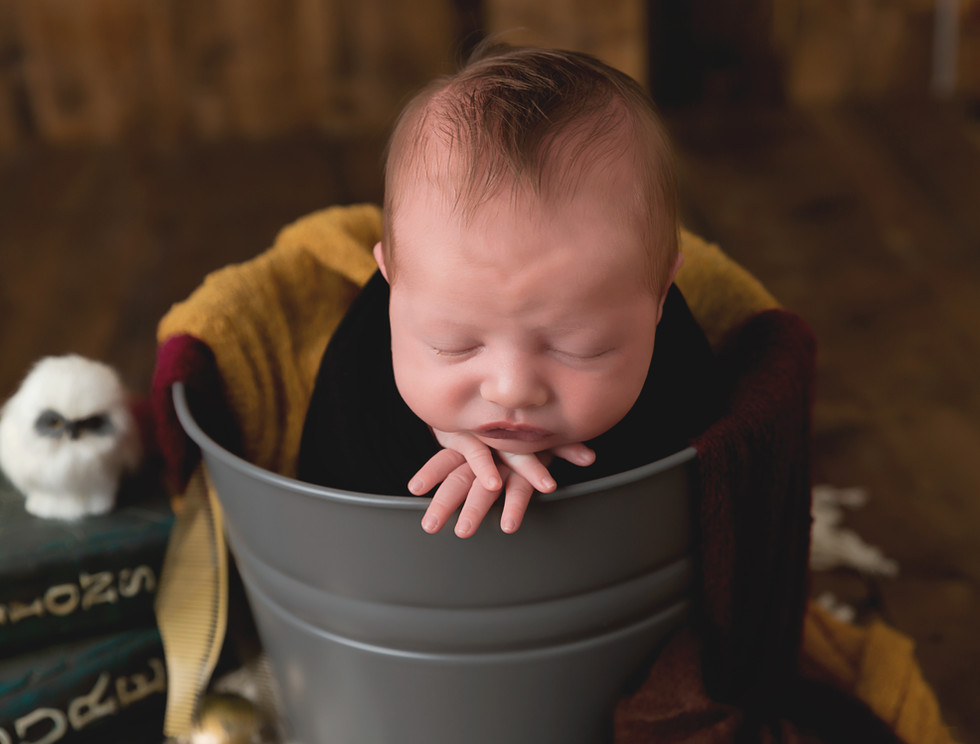 Newborn pictures Moscow Idaho