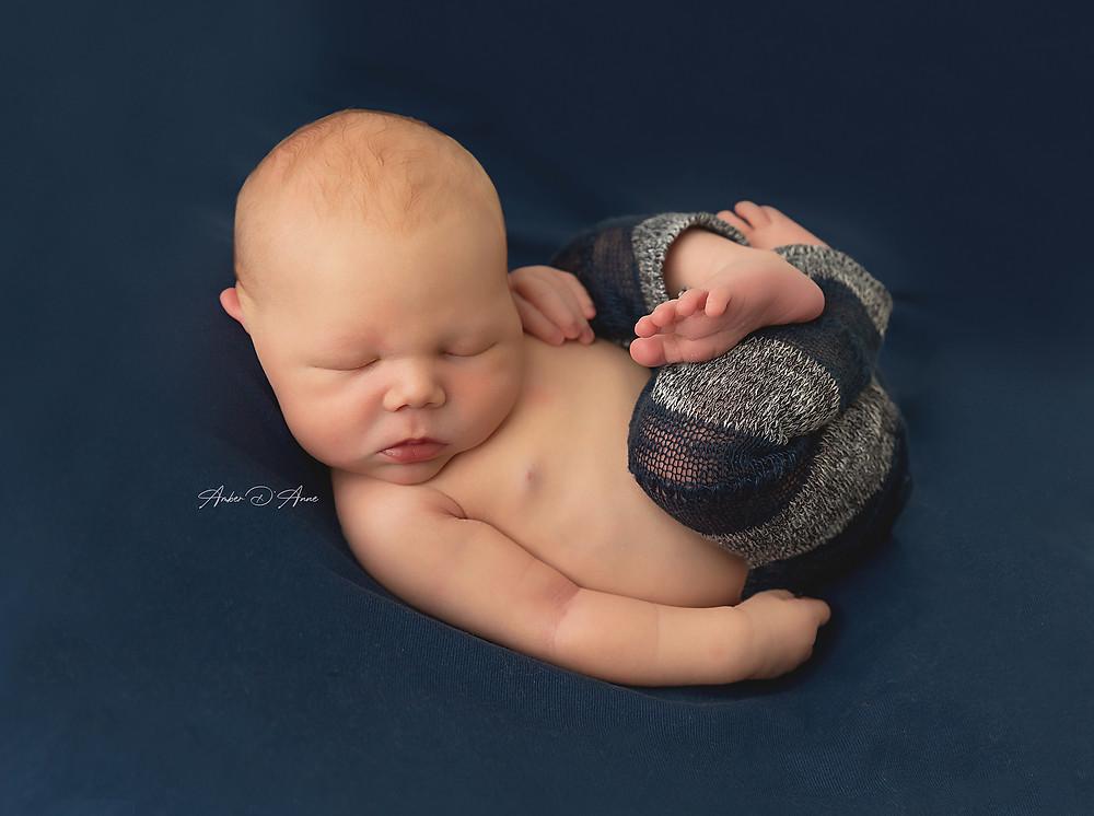 Newborn pictures in Pullman Washington