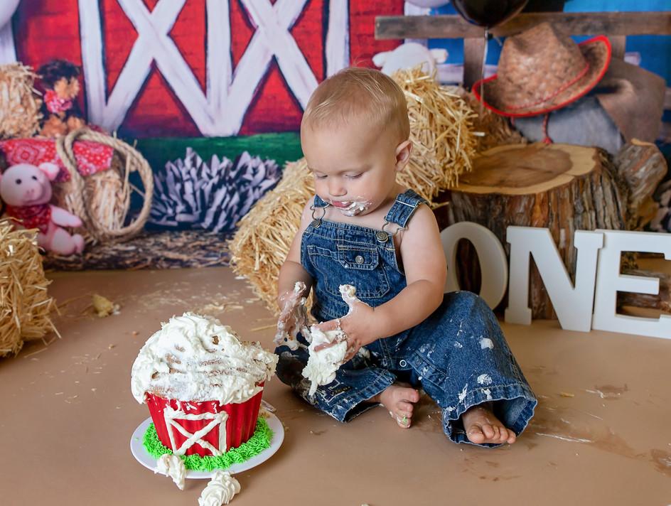 Cake smash pictures Pullman WA