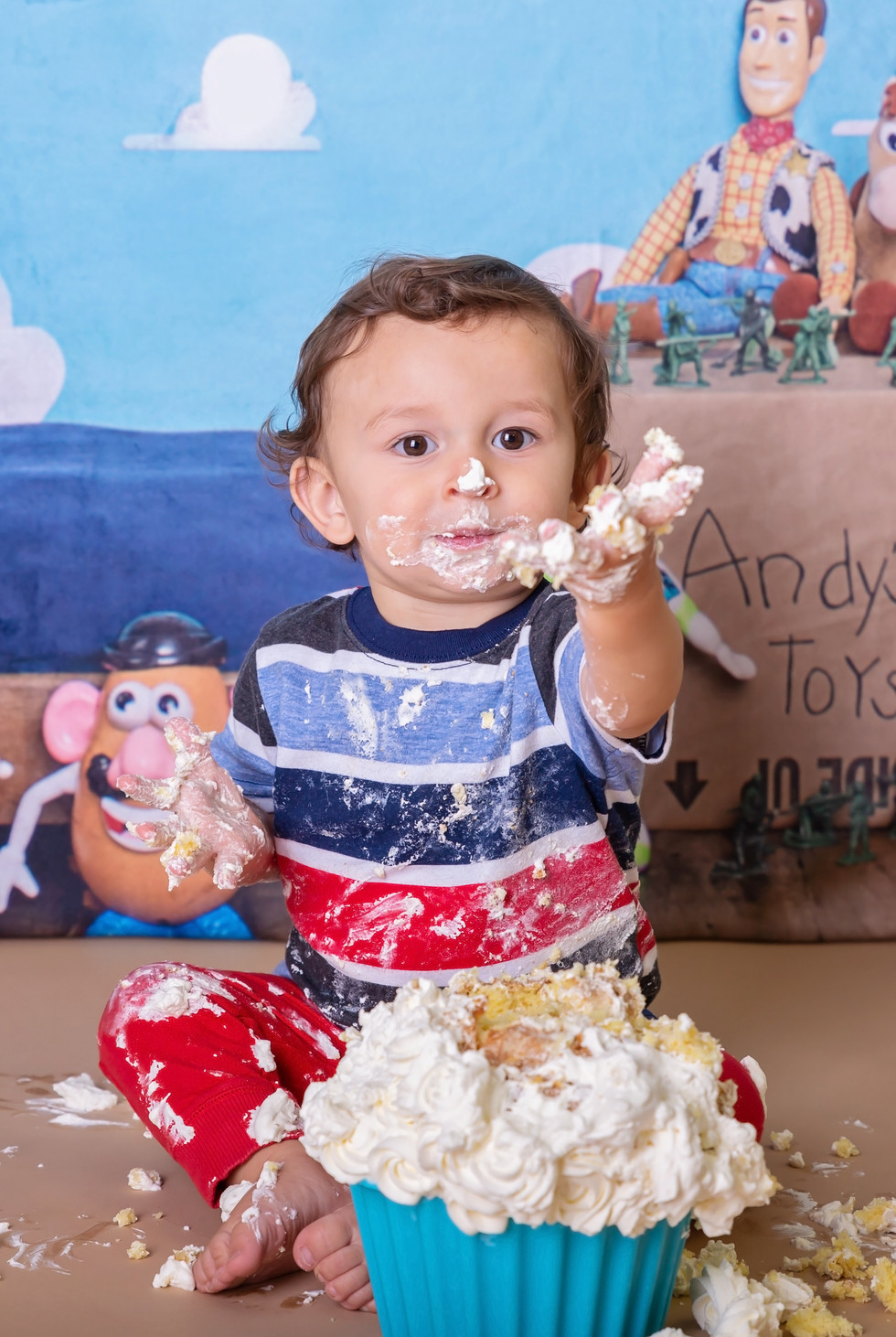 Cake smash pictures moscow idaho