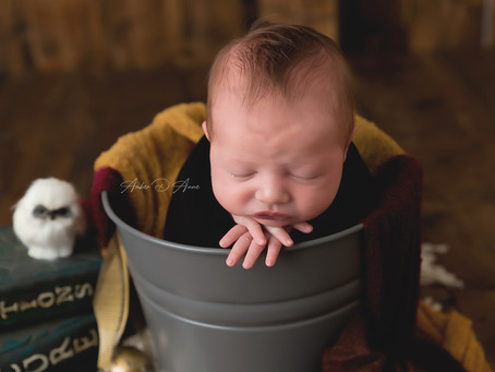 Meet Baby Brayden | Moscow Idaho Newborn Photographer