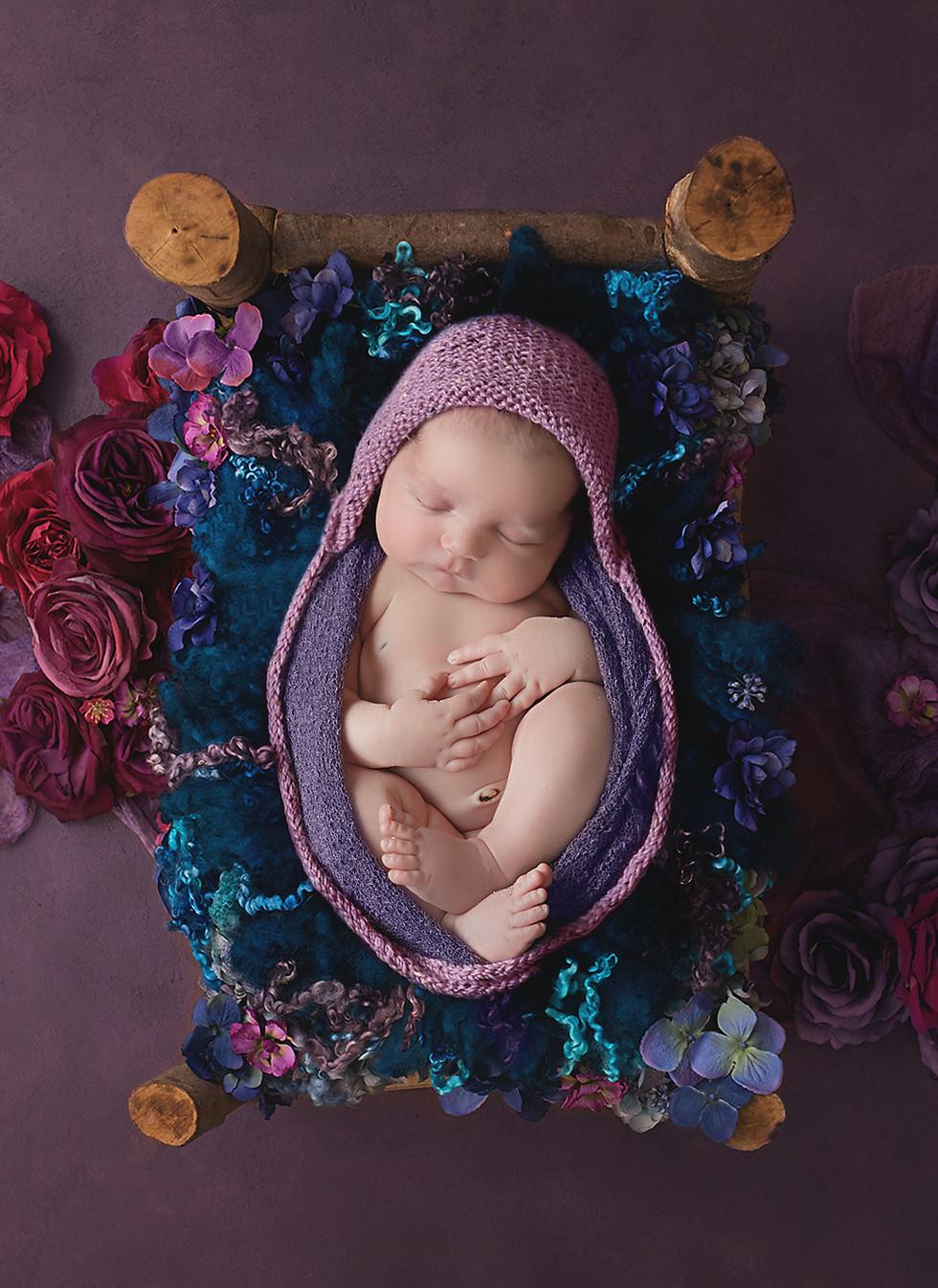 Moscow ID newborn photographer
