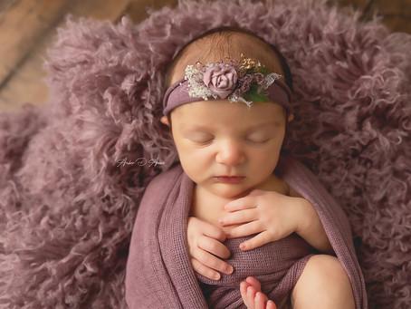 Meet baby Hayden | Moscow Idaho newborn photographer