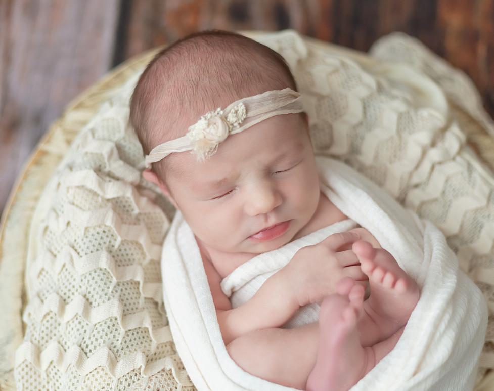 Newborn portraits in Moscow Idaho