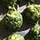 Thumbnail: Greens Galore