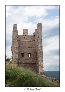 Chateau_de_Hyères