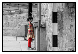 webnb Inde 2013-00482