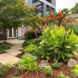 Front Walkway & Garden