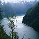 Unesco Naeroyfjord area.jpg