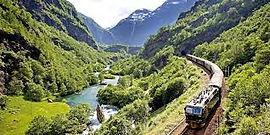 Bergen Train.jpeg