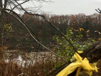 Fishermen Discover Body in Marlborough Pond