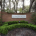 longwoods.jpeg