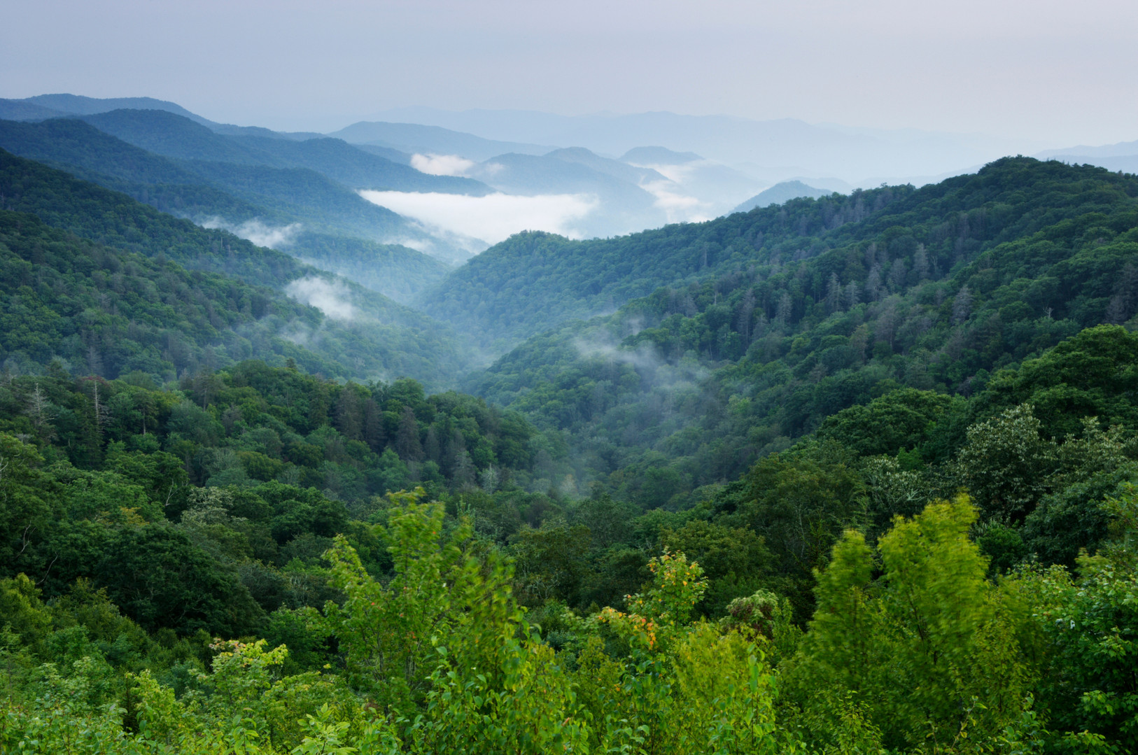 Smoky-Mountains-iStock-medium.jpg