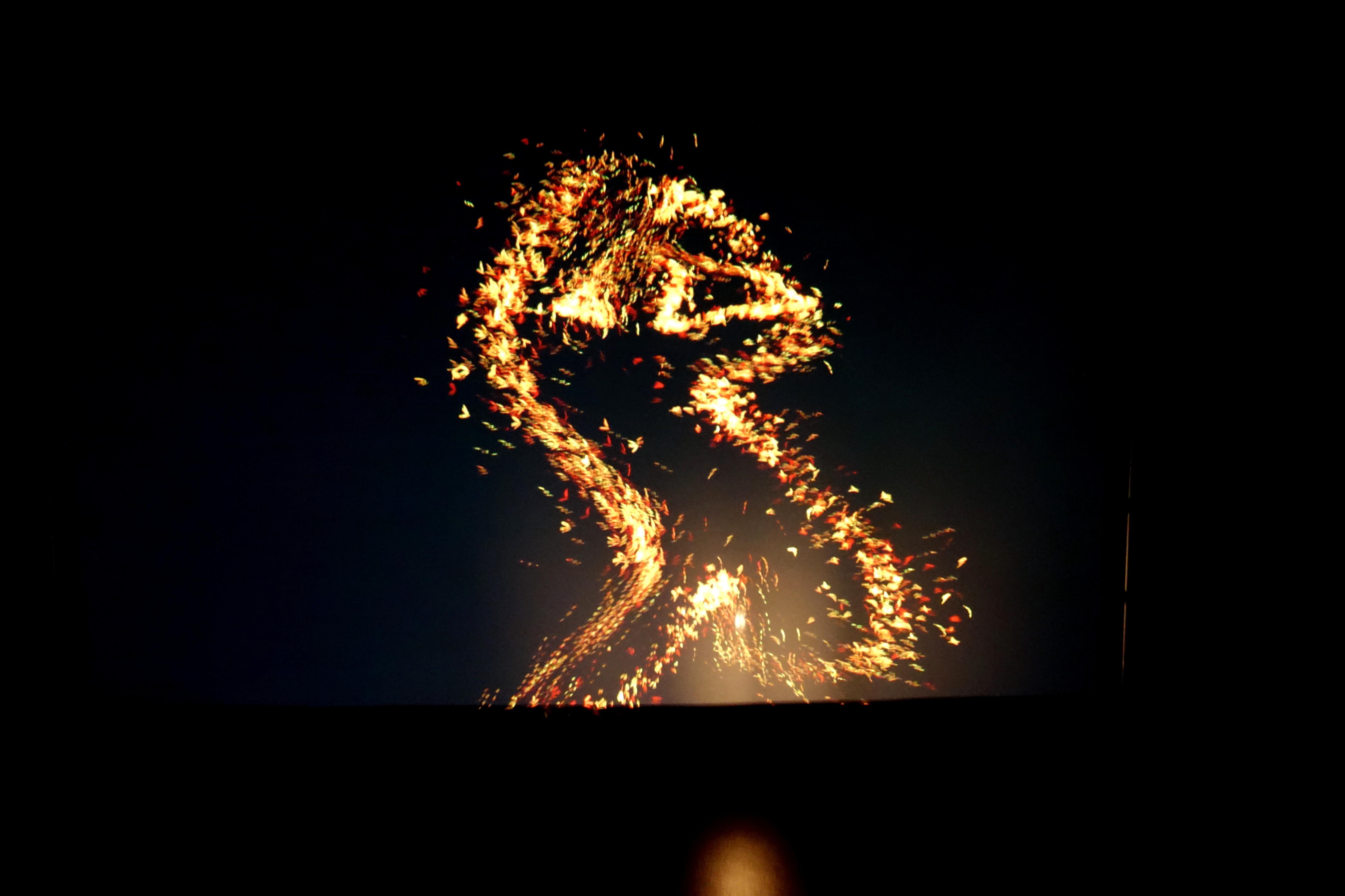 reflets ecran 3
