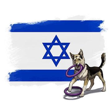 ההתאחדות הלאומית בישראל