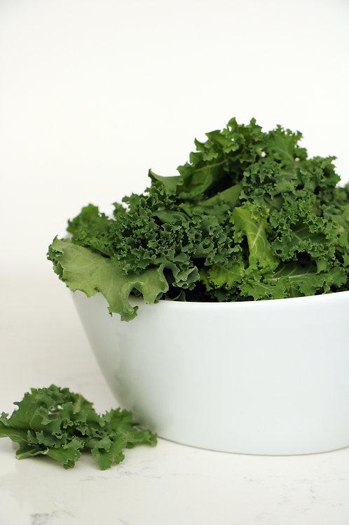 Blue Curled Scotch Kale