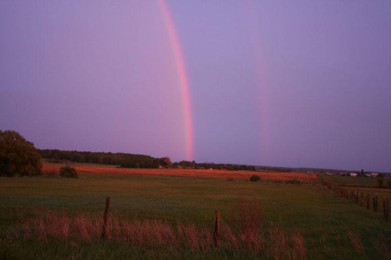 CR Rainbow