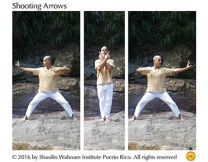 Shooting Arrows web.jpg