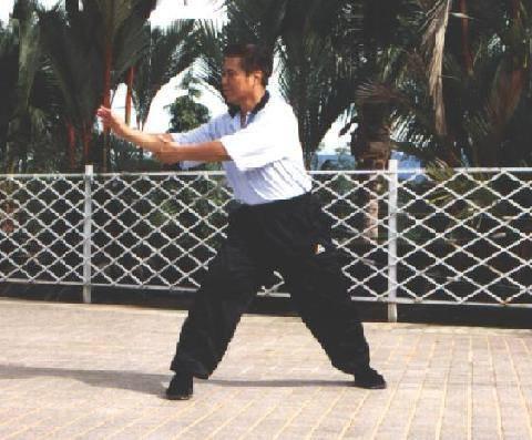 Gran Maestro Wong Kiew Kit mostrando el Zen Fluido